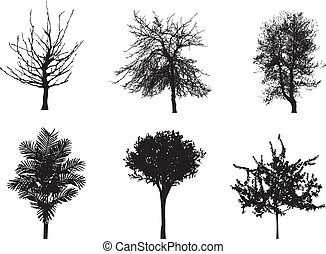 vektor, silhuetter, i, træer