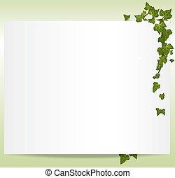 vektor, spring/summer, ram, med, murgröna, bladen