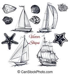 vektor, téma, alapismeretek, tenger, gyűjtés