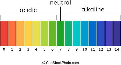 vektor, tabelle, ph, skala, alkalisch, säurehaltig