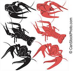 vektor, tiere, freigestellt, crayfish