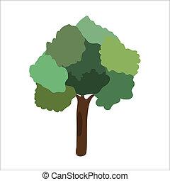 vektor, träd, illustration