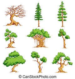 vektor, träd, sätta