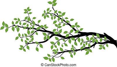 vektor, träd, silhuett, filial, grafik