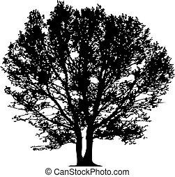 vektor, træ