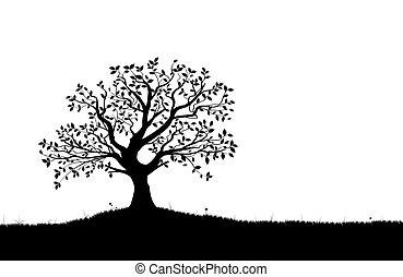 vektor, træ, silhuet, vectorial