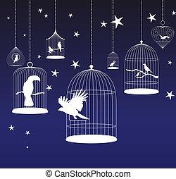 vektor, vögel, hintergrund, käfige