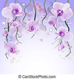 vektor, vattenfärg, bakgrund, med, orkidéer