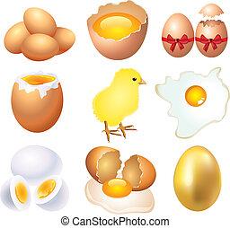 vektor, verschieden, satz, krankheit, eier