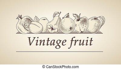 Vektor vintage fruit