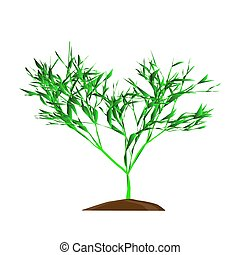 vektor, whie, träd, leafage, bakgrund, grön, illustration