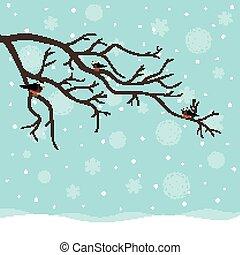 vektor, winter, vögel