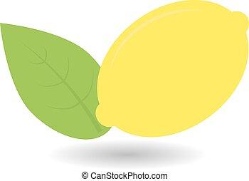 vektor, zöld, leaf., citrom, illustration.