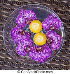 velas, flutuante, flores, spa