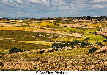 velden, highlands, centraal, pindaya, myanmar