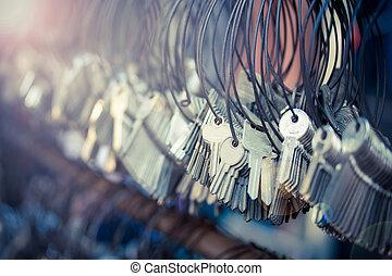 velen, keychain, bossen, in, ouderwetse , effect, stijl