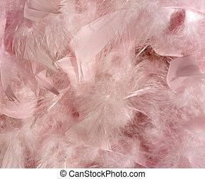 velloso, rosa, pluma, plano de fondo