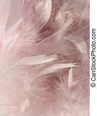 velloso, rosa, pluma, plano de fondo, con, esquina