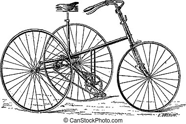 Velocipede, tricycle, vintage engraving.