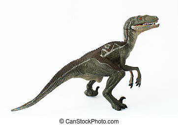 Velociraptor on white background