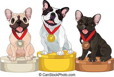 vencedores, de, cão, competição