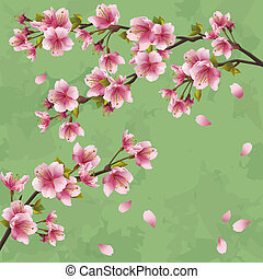 vendange, arbre, japonaise, sakura, fond, cerise