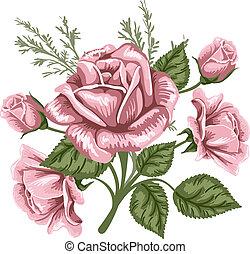 vendange, bouquet