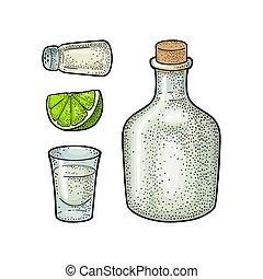 vendange, cactus, sel, gravure, botlle, lime., couleur, verre, vecteur, tequila.