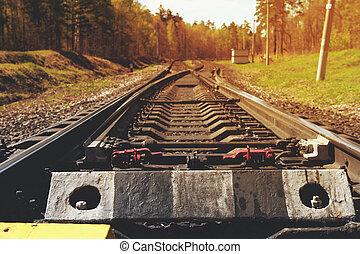 vendange, camion chemin fer, forêt