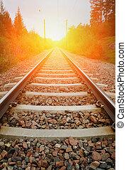 vendange, chemin fer