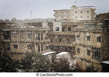 vendange, chute neige