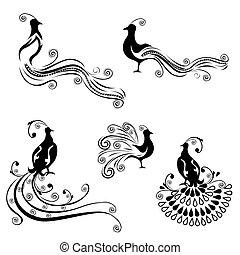 vendange, ensemble, oiseaux