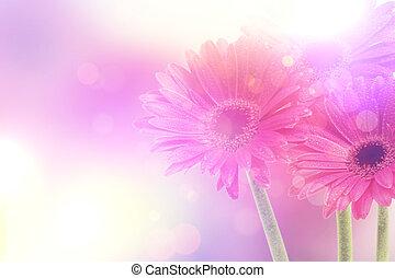 vendange, floral, fond