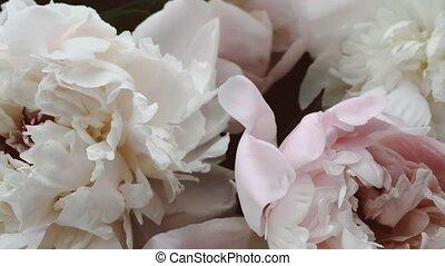 vendange, floral, mariage, fond, fleurs, fleur, pivoine, ...