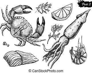vendange, fruits mer, illustration, main, vecteur, dessiné, set.