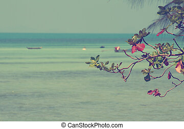 vendange, mer, amande, feuilles, sur, mer, fond, image