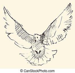vendange, paix, pigeon, illustration, blanc, gravé