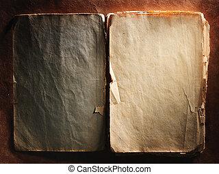 vendange, papier, vieux, livre