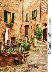 vendange, porche, rue, dans, italie