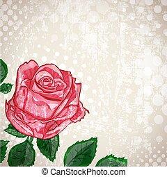 vendange, résumé, fleur, fond, rose