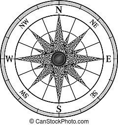 vendange, rose compas