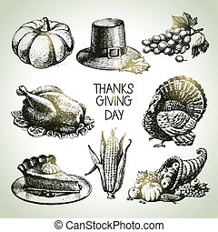 vendange, set., thanksgiving, main, illustrations, dessiné, jour