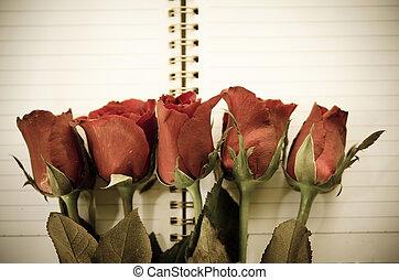 vendange, style, -, rose rouge, flower.