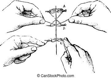 vendange, suture, tordu, engraving.