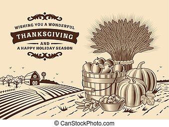 vendange, thanksgiving, paysage, brun