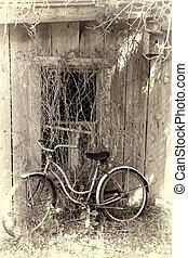 vendange, vélo, contre, bâtiment abandonné