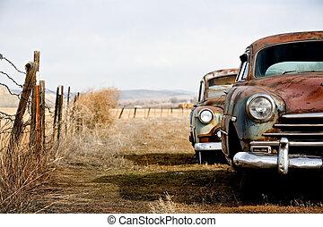 vendange, voitures