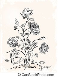 vendemmia, cartolina auguri, con, rose
