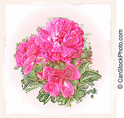 vendemmia, cartolina auguri, rose