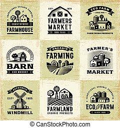 vendemmia, etichette, set, agricoltura biologica